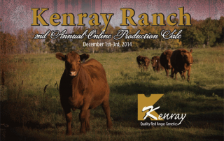 kenray-catalogue-resize-web-1