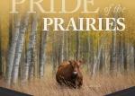 Pride of the Prairies Fall Female Angus Sale 2020