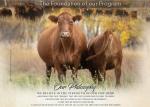 Kenray Ranch Angus Life